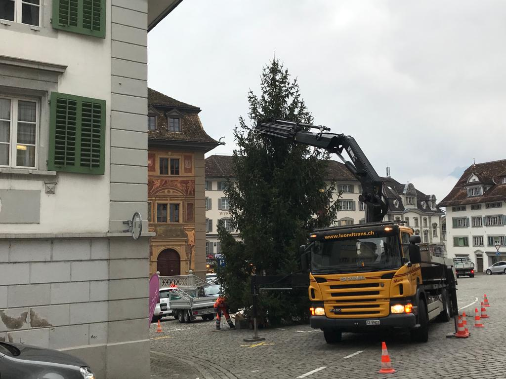 Gemeinde Schwyz, Christbaum auf Hauptplatz Schwyz stellen